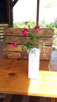 นำทางบันทึก : จัดดอกไม้~