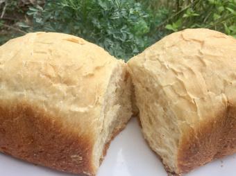 นำทางบันทึก : white bread 🍞